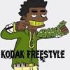 Kodak Freestyle