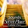 Track 3 Sounds From The Secret Place Volume Two