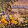 Radhika Krida Kanana Vasa