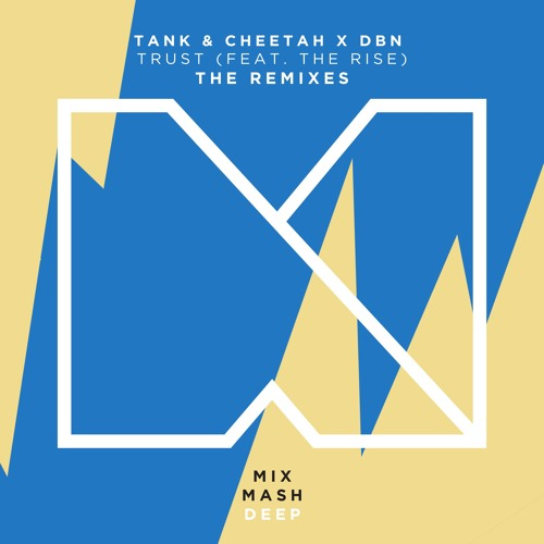 Tank & Cheetah & DBN feat. The Rise - Trust (Plastik Funk Remix)