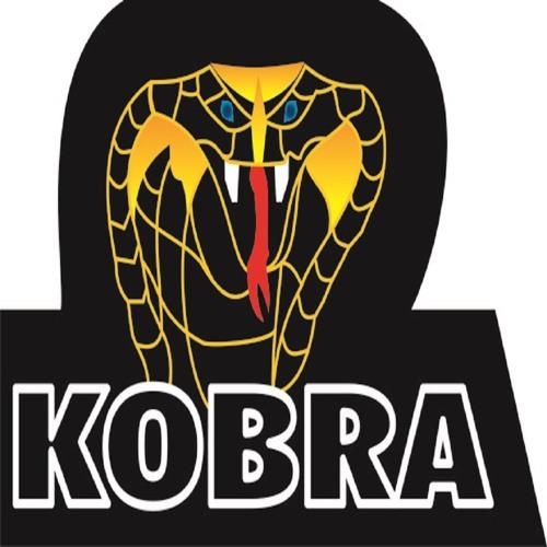 Dj Crilly - Kobra (Original Mix)