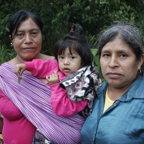 Mujeres indígenas en defensa de su territorio
