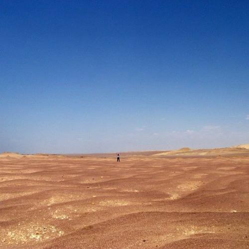 Edward Nesbit - In the Desert; with Anna Dennis