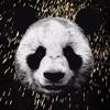 Lupe Fiasco - Panda (Bass Boosted)