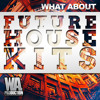 Download Future House Kits - SPLICE Sounds Exclusive [11 Kits, Sylenth / Spire / Massive Presets] Mp3