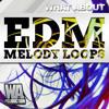 EDM Melody Loops - SPLICE Sounds Exclusive [Big Room / Progressive / Melbourne WAV MIDI Melodies]