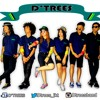 D'tRees - Reggae Music
