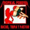 Buche Tripa Y Pastor (Metallica - Seek & Destroy cover) mp3