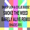 Snoop Lion & Collie Buddz - Smoke The Weed (Barely Alive RMX) (Rhades RFX)
