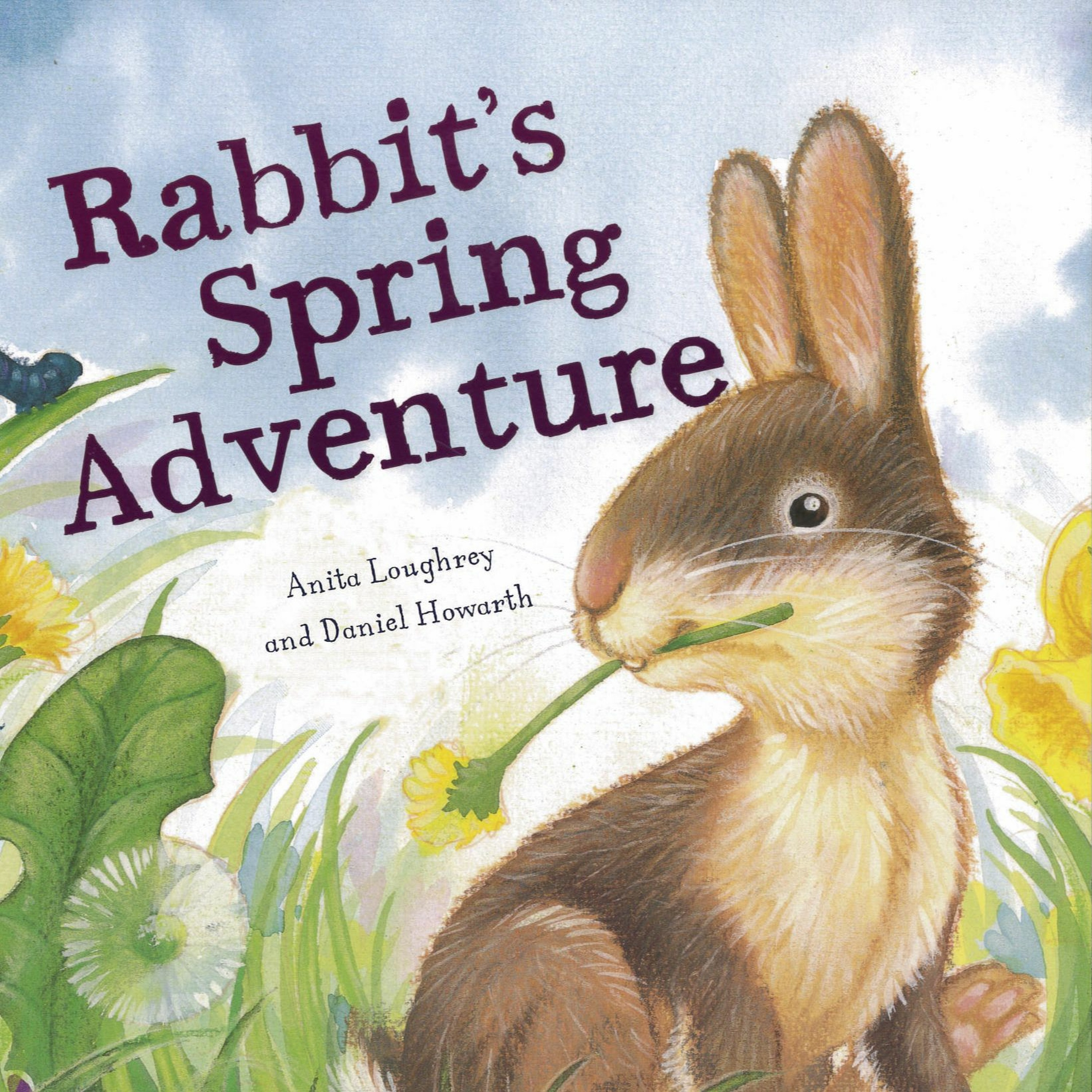 'Rabbit's Spring Adventure' by Anita Loughrey & Daniel Howarth