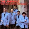 The Animals House of the Rising Sun (Cover Band)