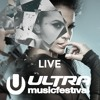 VASSY - Nothing To Lose (Live At Ultra 2016)