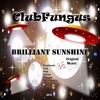 Brilliant Sunshine 🌞