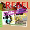 Rebel 2000  Musica, Cinema e Paesaggi Del Mondo