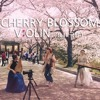 CHERRY BLOSSOM (벚꽃엔딩) - 버스커버스커 VIOLIN COVER by V:OLIN (feat. 국밥)