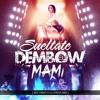 SUELTATE EL DEMBOW MAMI [MIXTAPE] - [ BIG YAMO X DJ ERICK - MIX ] - ERICK MAGALLANES V