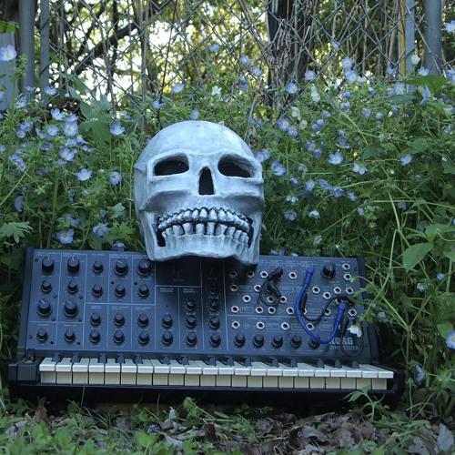 Cinco De Syntho - Analog Orgy