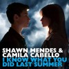 Shawn Mendes & Camila Cabello - I Know What You Did Last Summer (Remix Yban Kampos)
