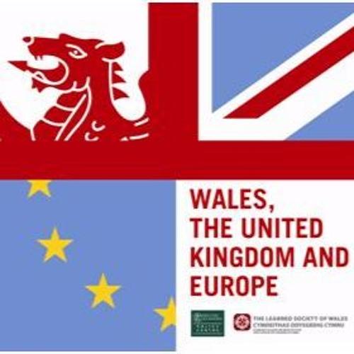 Welsh Devolution In Perspective - A Broader Perspective