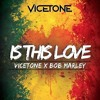 Vicetone X Bob Marley - Is This Love (slow3r)