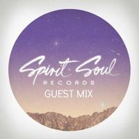 Heavy Pins - Spirit Soul Guest Mix (April 2016) - TUNNEL FM