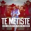 Ariel Camacho Y Los Plebes Del Rancho - Te Metiste (Segi Manzanares Club Mix) DEMO Portada del disco