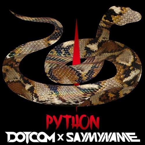 DOTCOM X SAYMYNAME- PYTHON