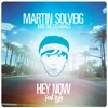 Martin Solveig ft. Kyle - Hey Now (Cathal Kissane Remix)