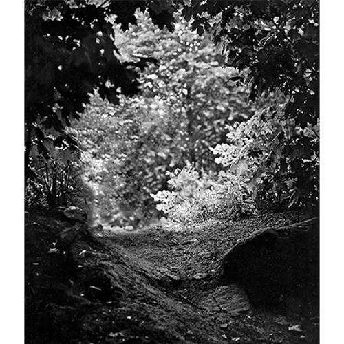 Fototerritório de Eugene Smith