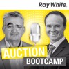 32. Advantage Of The Auctioneer