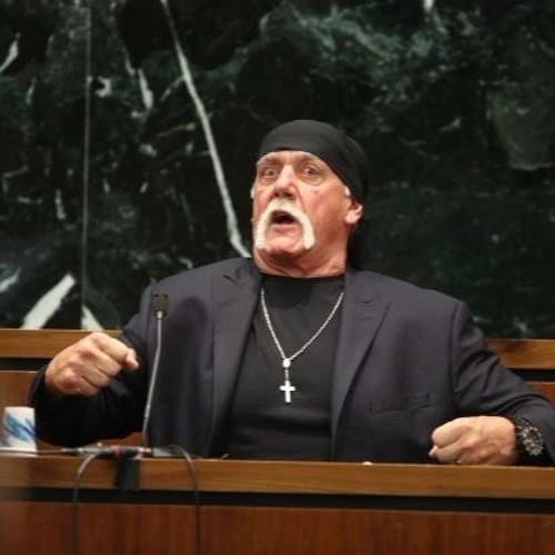 Hulk Hogan N - Word Rant