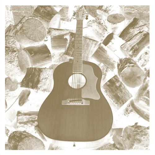 Michael Chapman- Homage To Grant Green- VDSQ Solo Acoustic Vol 11
