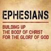 Graham Luey, Ephesians Series: Jew and Gentile Reconciled