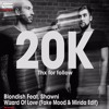 Blondish Feat. Shawni – Wizard Of Love (Fake Mood & Mirida Edit)[FREE DOWNLOAD]