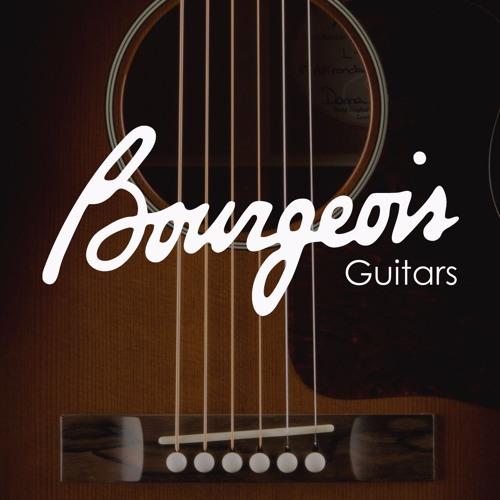 Scott Fore - Barnyard Funk - Bourgeois Soloist - LR Baggs Anthem