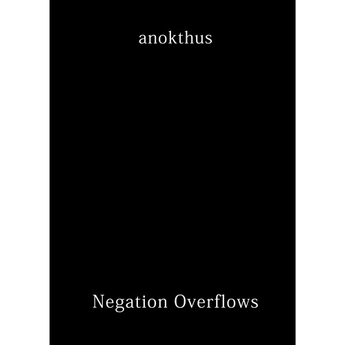 [FODE05] anokthus - Negation Overflows