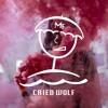 Trial & Error Ft. Katie Laffan - Cried Wolf (Matt Franco Remix)