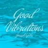 Good Vibrations Remix/Cover Prod. By The Sensei Blue