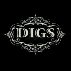 Digs - The Blame