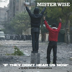 Mister Wise - If They Don't Hear Us Now