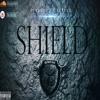 Shield [edited (with Nick Jonas solo technique)]