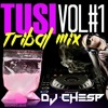 TUSI TRIBAL MIX VOL#1 - DJ CHESP