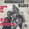 Roadhouse Blues - The Doors(Cover)
