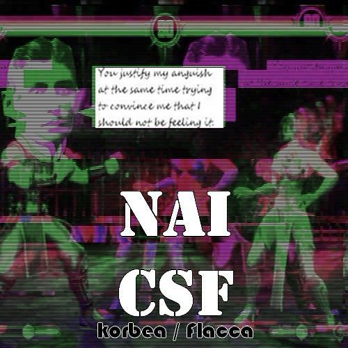 n-ai CSF (prod Flacca cel mai jmen băiat)