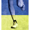 Finish Line: The Untold Stories of the 2013 Boston Marathon