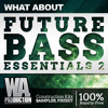 Future Bass Essentials 2 - OUT NOW!! [2GB+ Flume, Wave Racer Inspired Samples, Presets, Kits]