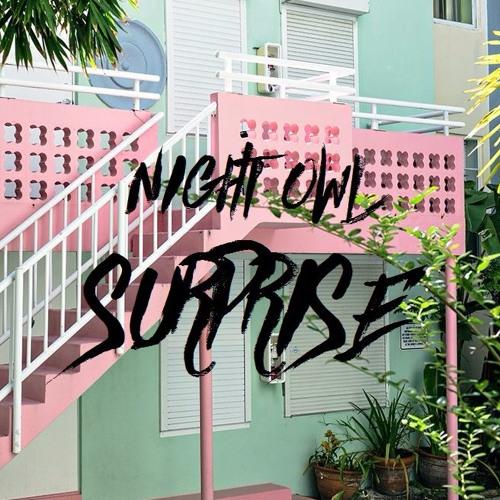 Night Owl - Surprise