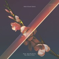 Flume - Never Be Like You (Ft. Marco Foster) (Nikö Blank Remix)