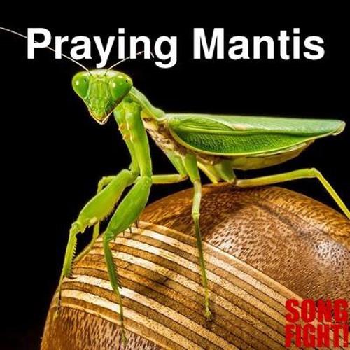 Starfinger - Praying Mantis