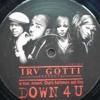 NICHE CLASSIC - IRV GOTTI [Presents] DOWN 4 U - (DnD Conemelt Mix)
